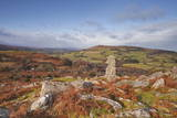 Bowerman's Nose on Hayne Down in Dartmoor National Park  Devon  England  United Kingdom  Europe