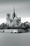 Notre Dame Cathedral on the River Seine  Paris  Ile De France  France  Europe