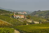 View over Barolo Village and Vineyards  Langhe  Cuneo District  Piedmont  Italy  Europe
