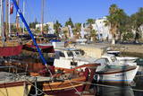 Boats in Bodrum Harbor  Anatolia  Turkey  Asia Minor  Eurasia