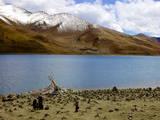 Sacred Tibetan Yamdrok Tso Lake (Yamzho Yumco)