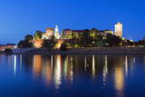 Wawel Hill Castle and Cathedral
