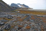 Glacial Foreshore  Magdalenefjord  Svalbard Looking West