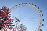 The London Eye on a Bright Sunny Day  London  England  United Kingdom  Europe