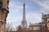 The Eiffel Tower in Paris  France  Europe