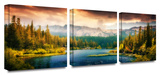 Into the Wild 3-Piece Canvas Set