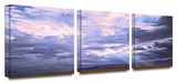 Echo Cliffs  3-Piece Canvas Set
