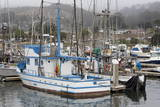Marina in Pillar Point Harbor  Half Moon Bay  California  United States of America  North America