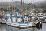 Marina in Pillar Point Harbor  Half Moon Bay  California  United States of America  North America