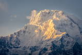The Evening Sun on Annapurna South  7219M  Annapurna Conservation Area  Nepal  Himalayas  Asia