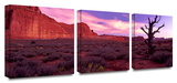 High desert dawn 3-Piece Canvas Set