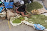 Lady Grinding Spices in Rahba Kedima (Old Square)  Marrakech  Morocco  North Africa  Africa