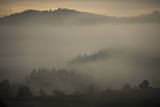 Clouds Drift Among Hills of Oak Savanna Ecosystem