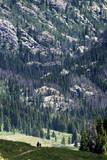 A Family Hikes Along a Singletrack in the Colorado Mountains