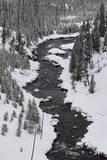 The Firehole River and Nearby Forest in a Snowy Winter Landscape