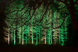 Longwood Gardens  in Pennsylvania  Showcases its Annual Holiday Lights and Decorations