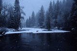A Mule Deer Walks Along the Merced River in a Snow Storm at Twilight