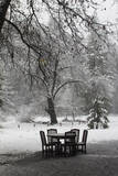 Snow Falling on a Table and Chairs Set in a Clearing at the Edge of a Forest