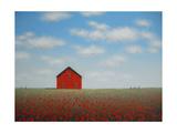 Poppy Barn