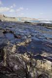 Oil on the Bocabarranco and Las Gaviotas Beaches  South Las Palmas  Canary Islands