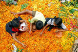 Children Pick Up the Unspoilt Marigold Flowers to Make Garlands from a Waste Flowers Dumping Site