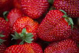 A Close-Up View of Strawberrie