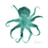 Teal Octopus Reproduction d'art par Albert Koetsier