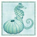 Seaside Seahorse