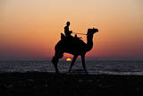 Palestinian Man Rides a Camel Along the Beach During Sunset in the West of Gaza City