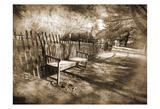 Park Bench Sepia