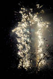 Fireworks Show Ushers in New Year