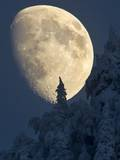 The Moon Rises Above the Snow Covered Trees Near Igis