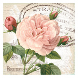 Pink Fleur 1
