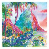 St Lucia Rainbow Square
