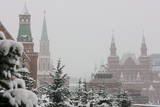 Trees Covered with Snow on the Red Square