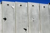The Controversial Israeli Separation Wall as Pidgeons Fly in a Ram in the West Banksewerage Tunnel