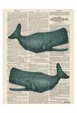 Sperm Whale Reproduction d'art par Tina Carlson