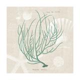 Gorgonia Miniacea on Linen Sea Foam Sq