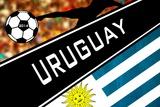 Brazil 2014 - Uruguay