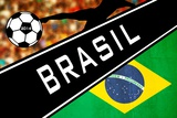 Brazil 2014 - Brazil