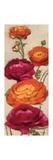 Free Range Roses I