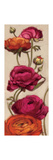 Free Range Roses II