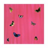 Flutter G