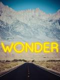 Wonder B