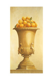 Oranges in Vase