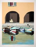 Boats at Ville V