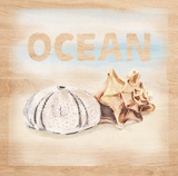 Natural Ocean Words