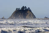 USA Washington  Olympic NP Sea stacks along the coast at Cape Alava