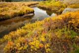 stream running through valley in autumn