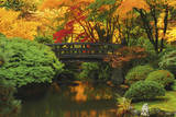 Autumn at Portland Japanese Garden  Portland  Oregon  USA